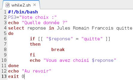 BashLinux-While2