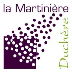Lycée La Martinière Duchère